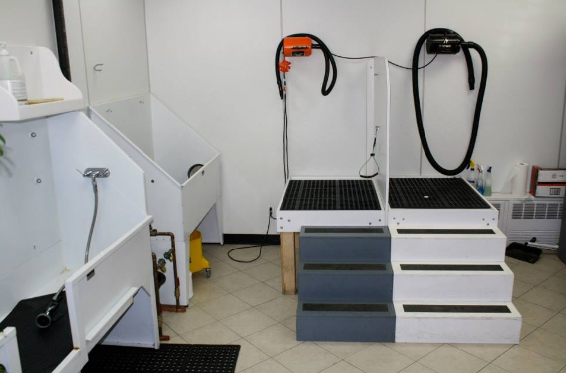 wagging tails (gallery pic 2 grooming equipment)
