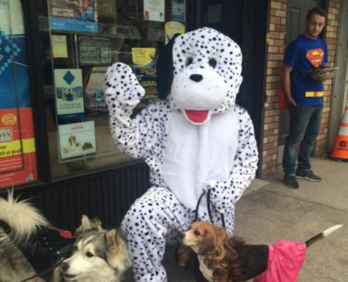 wagging tails (gallery pic 4 puppy custume)