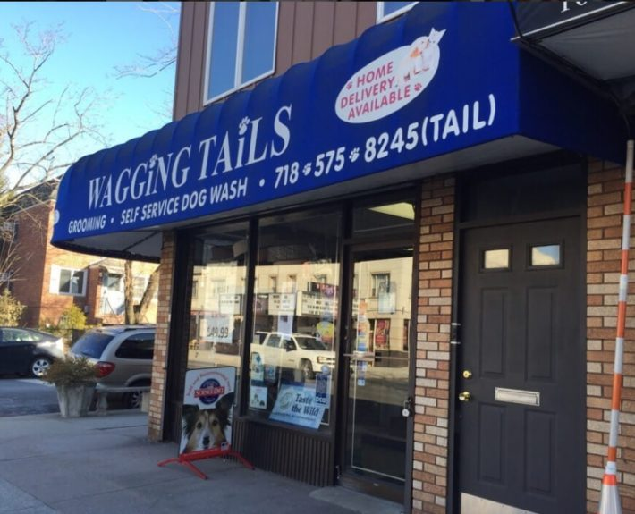 wagging tails (pic of shop on yelp)